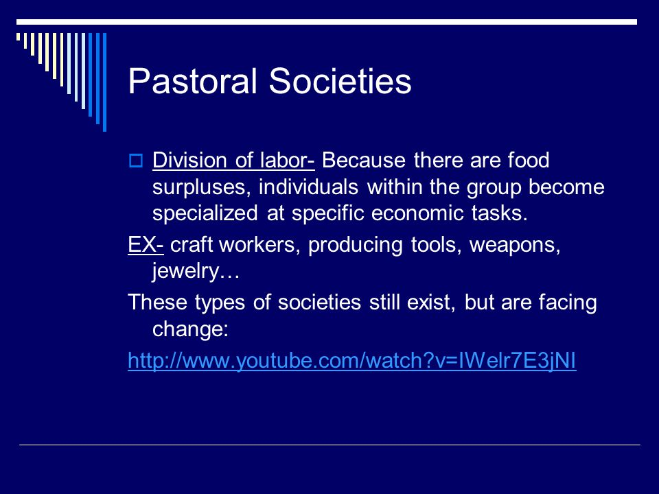 Pastoral Societies Division of labor- Because there are food surpluses, individuals within the group become specialized at specific economic tasks.