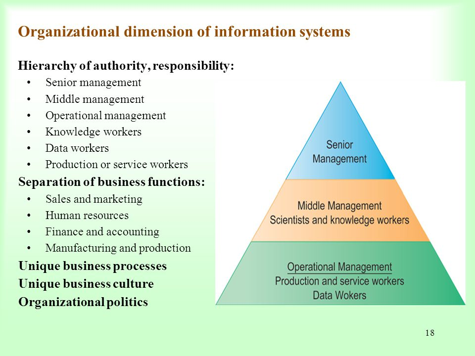 describe the information systems serving each of the major functional areas of a business Information systems differ in their business needs three major information systems are figure 12 shows relation of information system to the levels of.