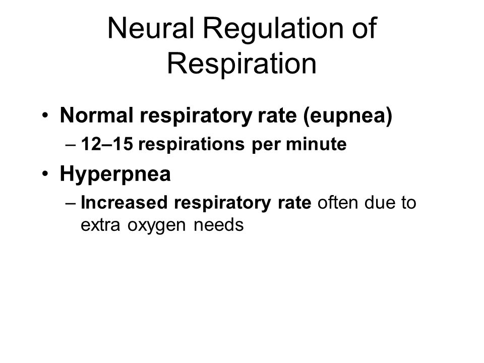 neural and chemical control of respiration pdf