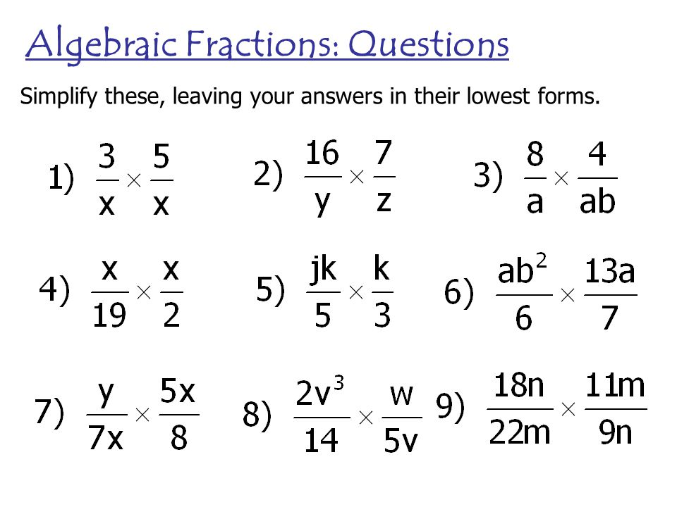 simple algebra questions and answers pdf