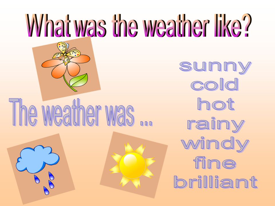 What was the weather like