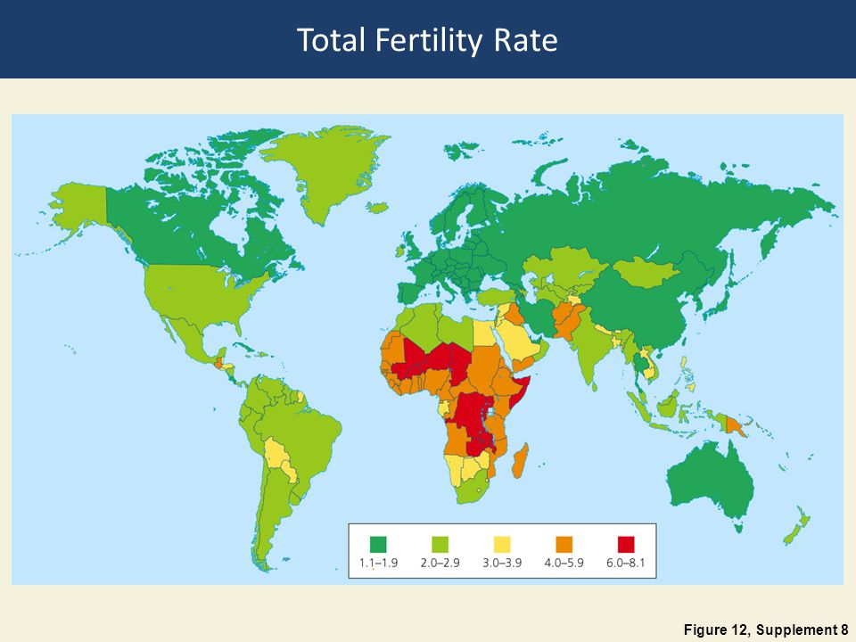 Total Fertility Rate Figure 12, Supplement 8