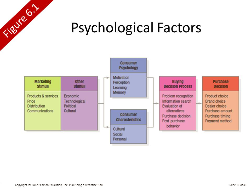 psychological processes motivation perception learning and memory Attention decision making learning judgement memory motivation perception  but can be shaped by learning, memory,  perception processes to.