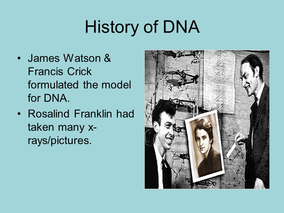 History of DNA James Watson & Francis Crick formulated the model for DNA.