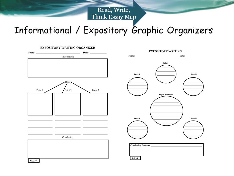 essay expository graphic organizer