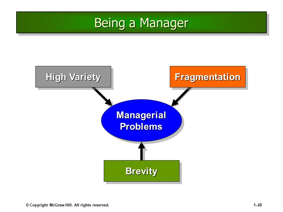 Being a Manager High Variety Fragmentation Managerial Problems Brevity