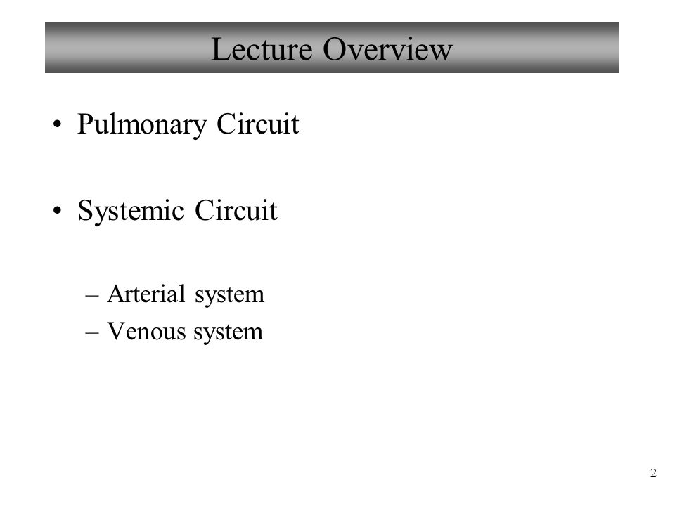 Lecture Overview Pulmonary Circuit Systemic Circuit Arterial system