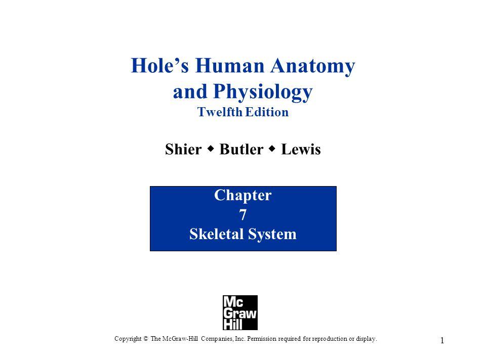 Chapter 7 Skeletal System - ppt video online download