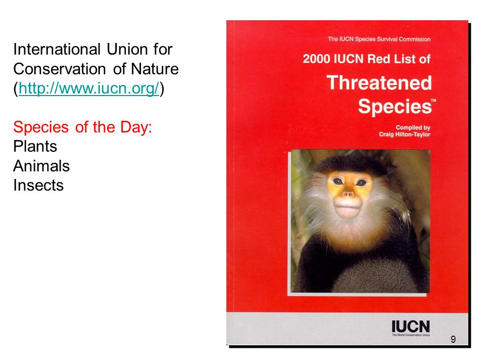 Conservation Genetics - ppt video online download