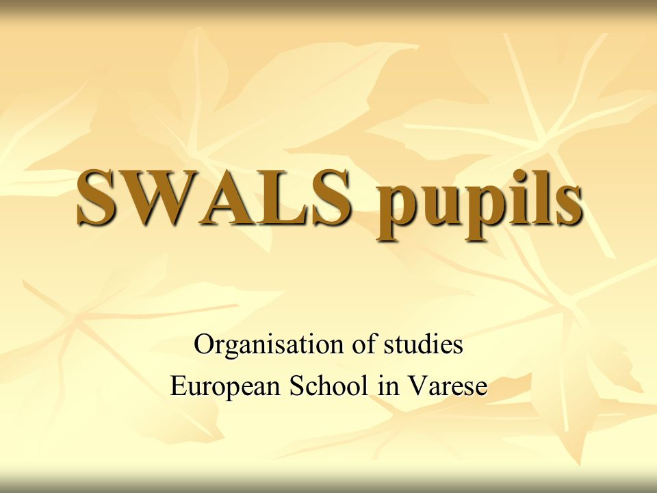 Organisation of studies European School in Varese