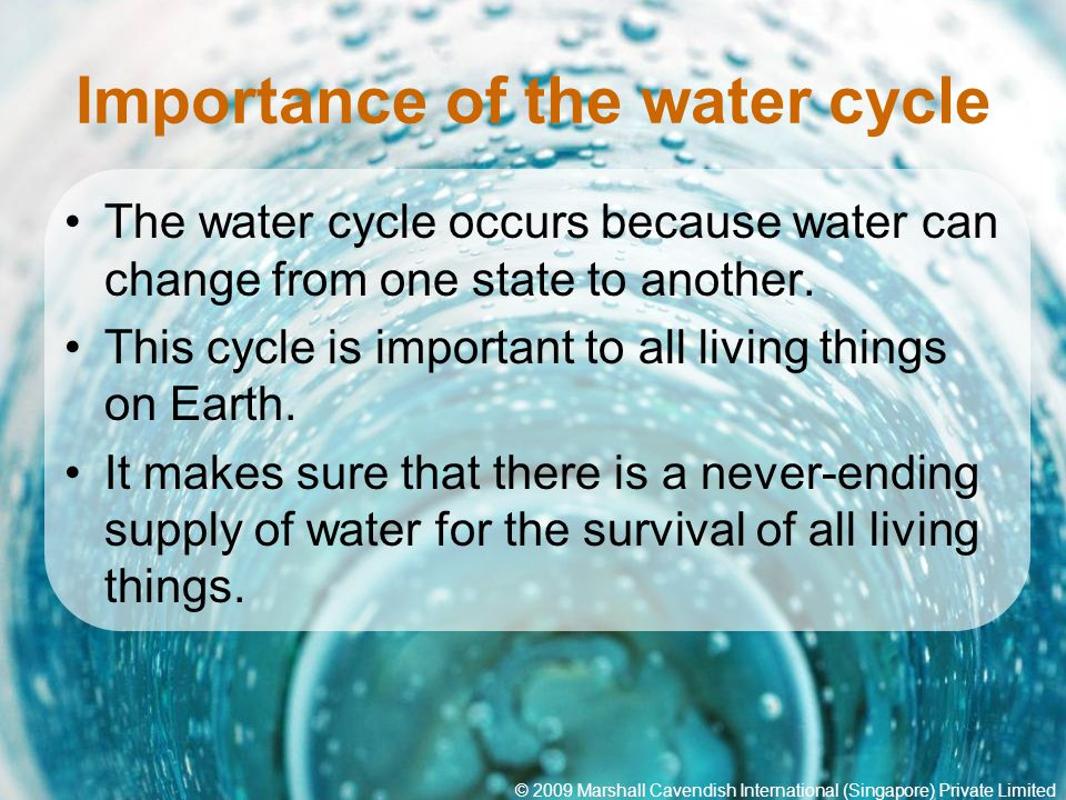 a report on the importance of water to life on earth It is vital for all known forms of life on earth water on earth moves continually through the water lack of investment in water or insufficient human capacity make it impossible for authorities to satisfy the demand for water the report found that it would be possible to.