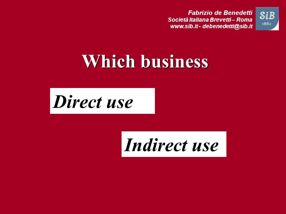Which business Direct use Indirect use Fabrizio de Benedetti