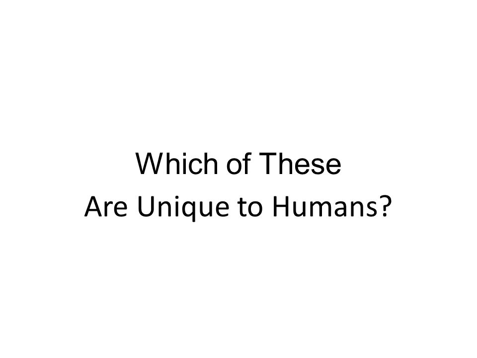 Which of These Are Unique to Humans