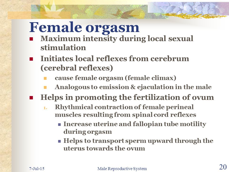 Female orgasm intensity