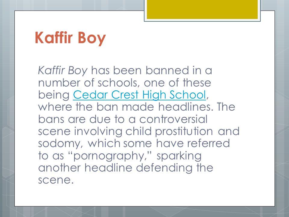 kaffir boy reflection