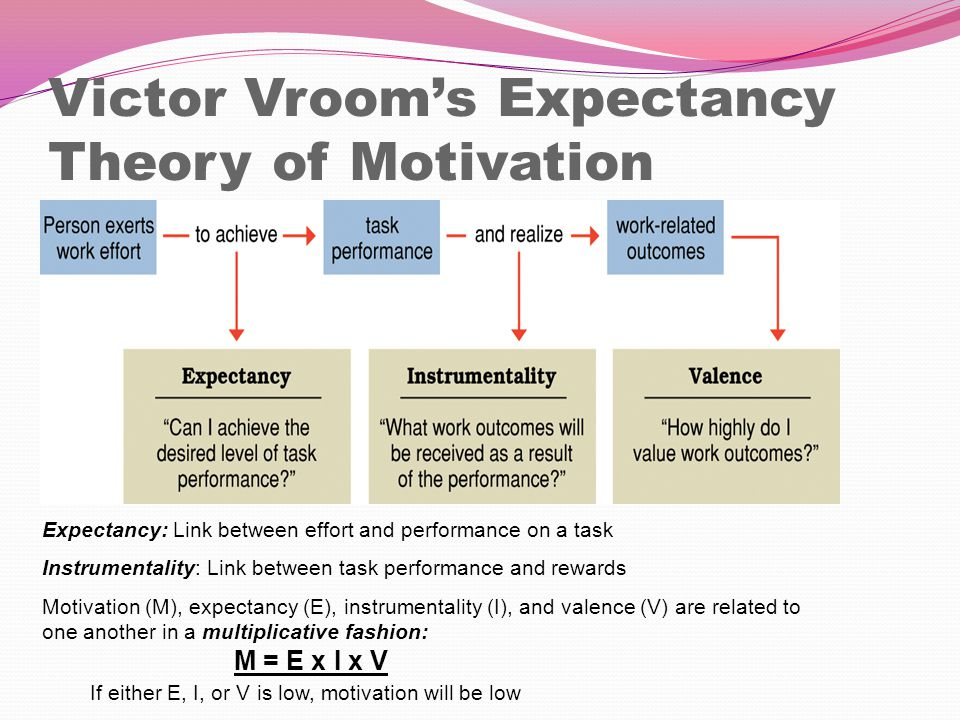 expectation theory Vroom's expectancy theory assumes that behavior results from conscious choices among alternatives whose purpose it is to maximize pleasure and to minimize pain vroom realized that an employee's performance is based on individual factors such as personality, skills, knowledge, experience and abilities.