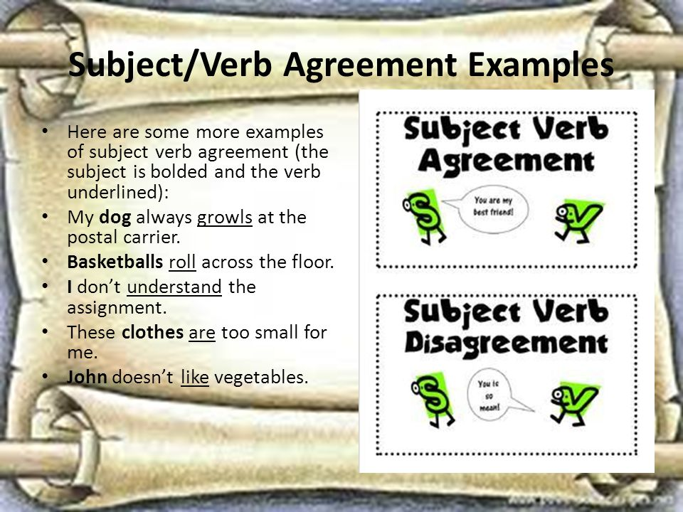 Subject/Verb Agreement Examples