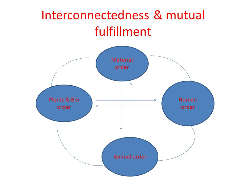 Interconnectedness & mutual fulfillment
