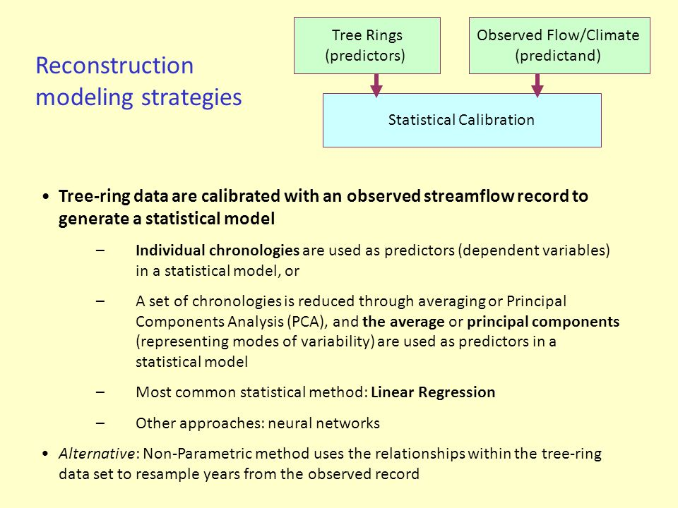 Reconstruction modeling strategies