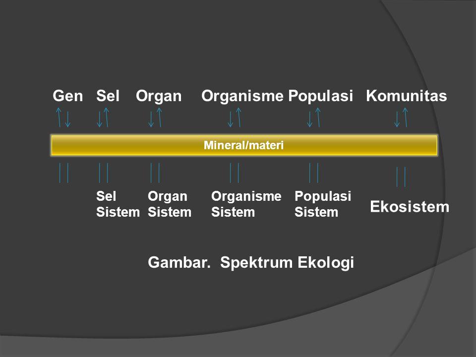 02 agroecosystem concept ppt video online download 4 gambar spektrum ekologi ccuart Gallery