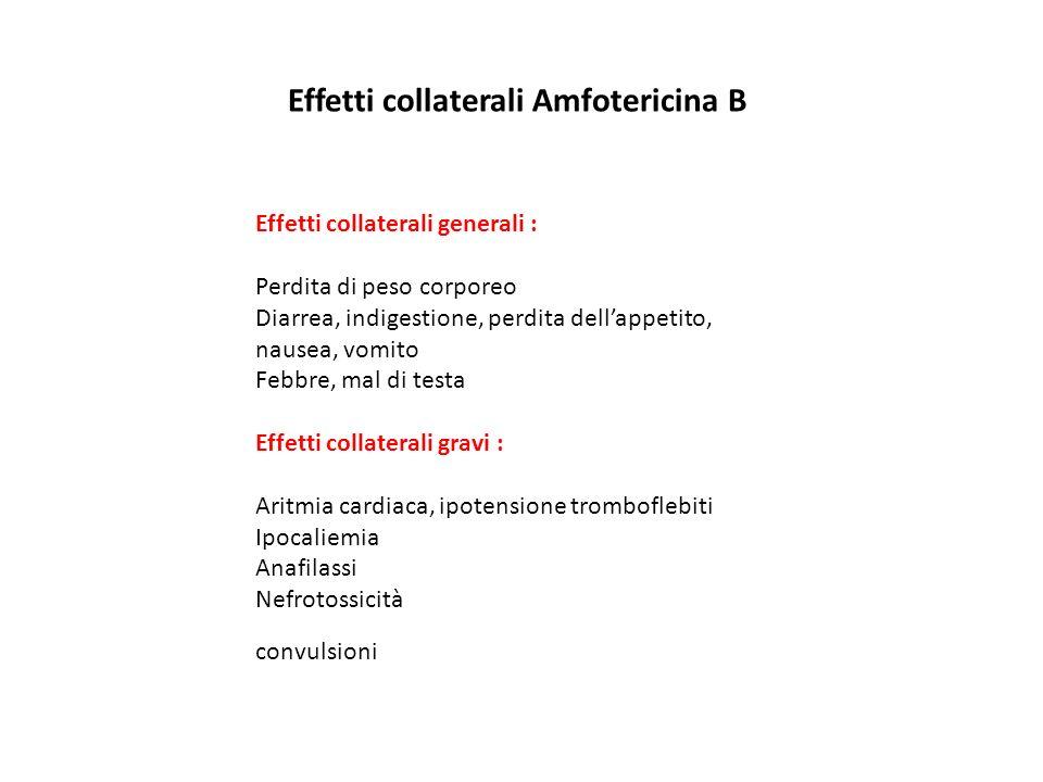 Effetti collaterali Amfotericina B