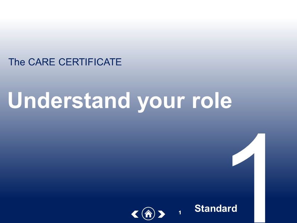standard 1 understand your role Enable you to carry out your role effectively you will need to discuss this with your manager and some of the policies and procedures will be listed in other sections of this workbook under safeguarding(standard 6), health and safety ( standard3), equality and diversity (standard 1) list the main policies and procedures.