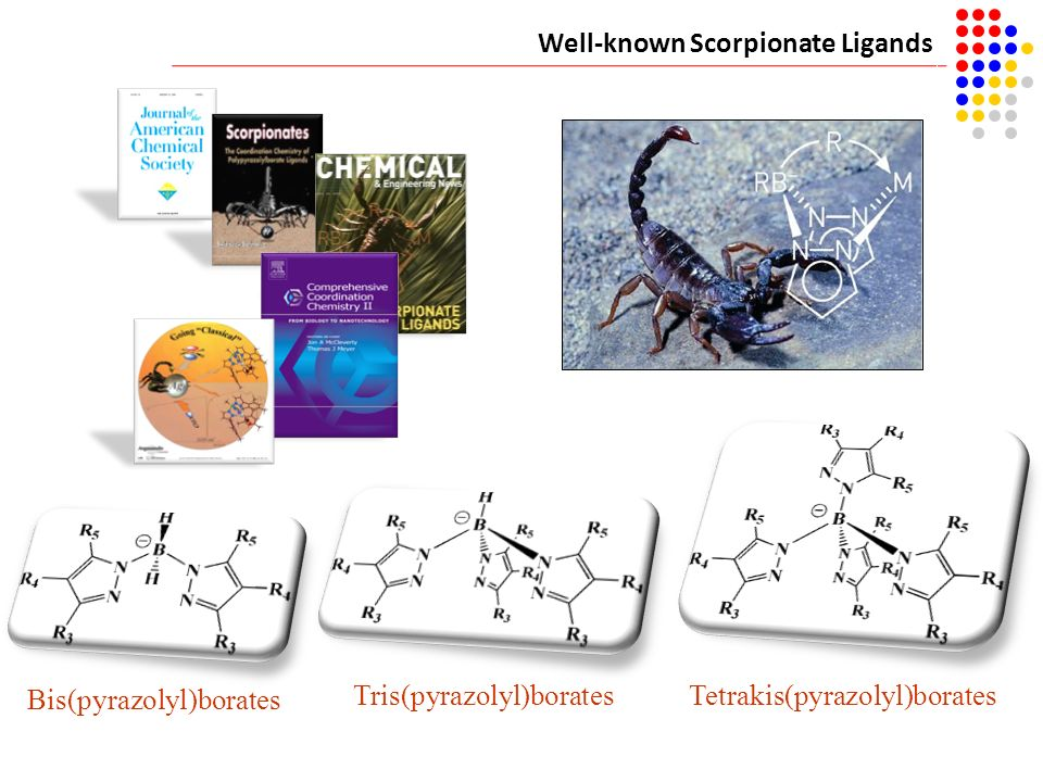 Well-known Scorpionate Ligands