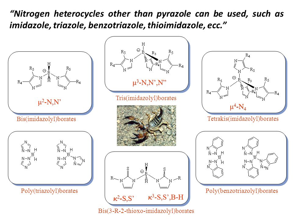 Nitrogen heterocycles other than pyrazole can be used, such as imidazole, triazole, benzotriazole, thioimidazole, ecc.