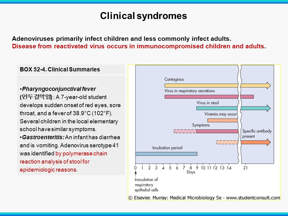 Clinical syndromes Adenoviruses primarily infect children and less commonly infect adults.