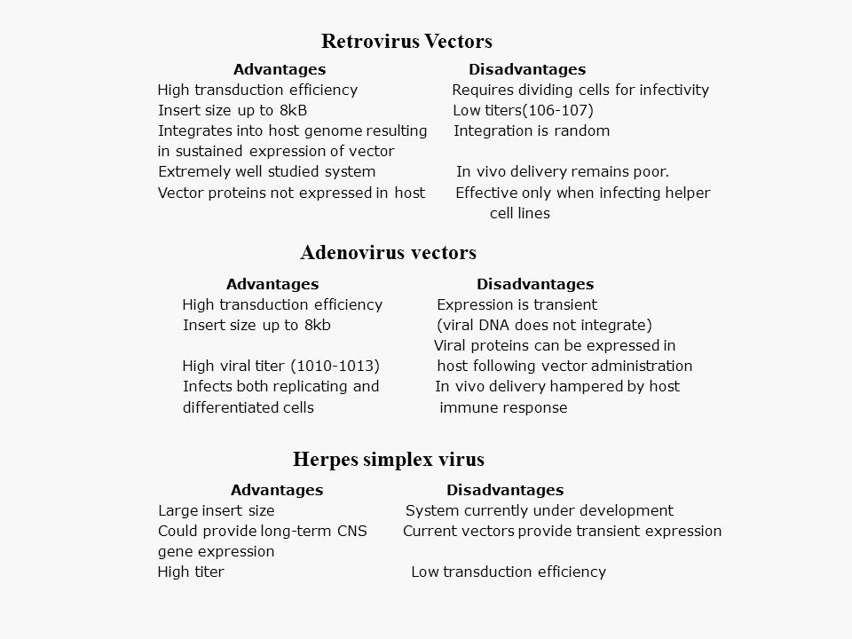 Retrovirus Vectors Adenovirus vectors Herpes simplex virus