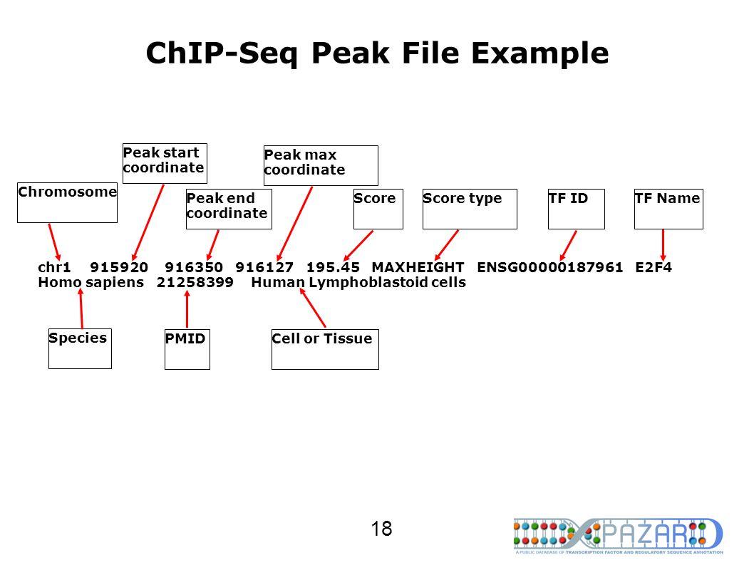 ChIP-Seq Peak File Example