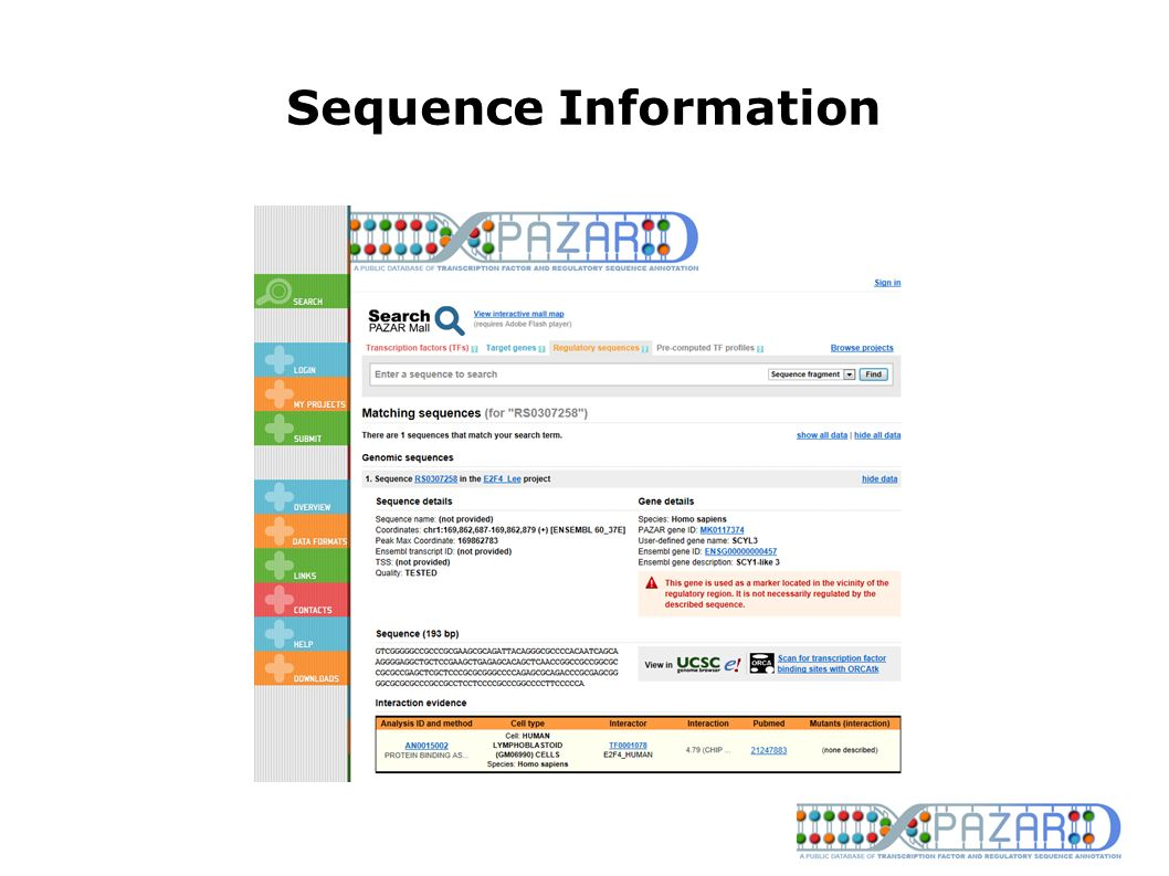 Sequence Information