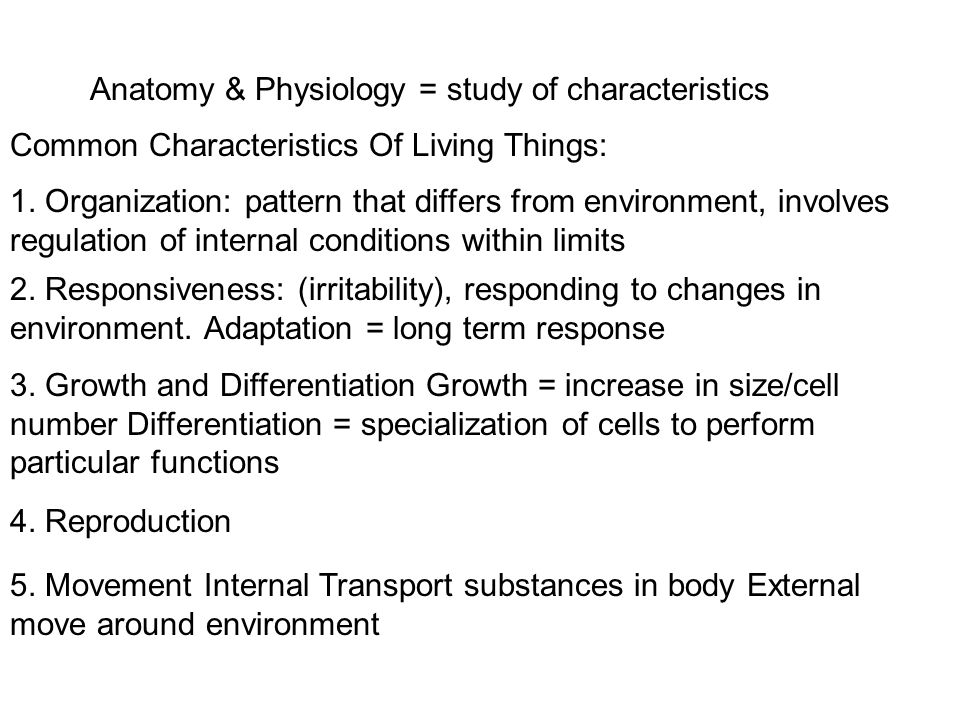 Anatomy & Physiology = study of characteristics - ppt video online ...