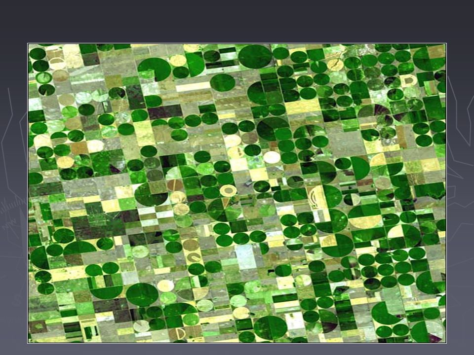 Resembling a work of modern art, variegated green crop circles cover what was once shortgrass prairie in southwestern Kansas. The most common crops in this region—Finney County—are corn, wheat, and sorghum. Each of these crops was at a different point of development when the Advanced Spaceborne Thermal Emission and Reflection Radiometer (ASTER) captured this image on June 24, 2001, accounting for the varying shades of green and yellow. Healthy, growing crops are green. Corn would be growing into leafy stalks by late June. Sorghum, which resembles corn, grows more slowly and would be much smaller and therefore, possibly paler. Wheat is a brilliant gold as harvest occurs in June. Fields of brown have been recently harvested and plowed under or lie fallow for the year.