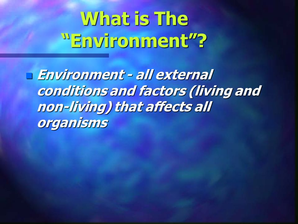 What is The Environment