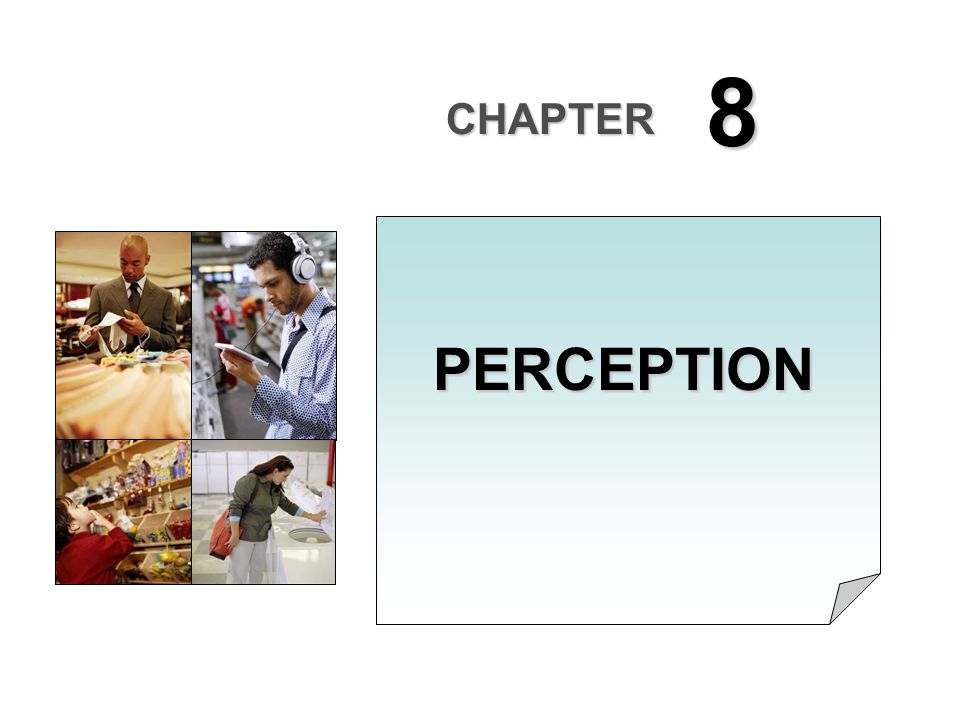 8 CHAPTER PERCEPTION