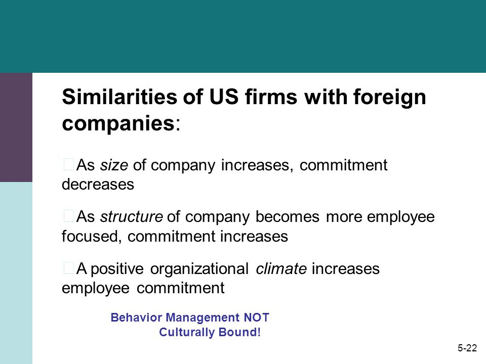 Similarities of US firms with foreign companies: