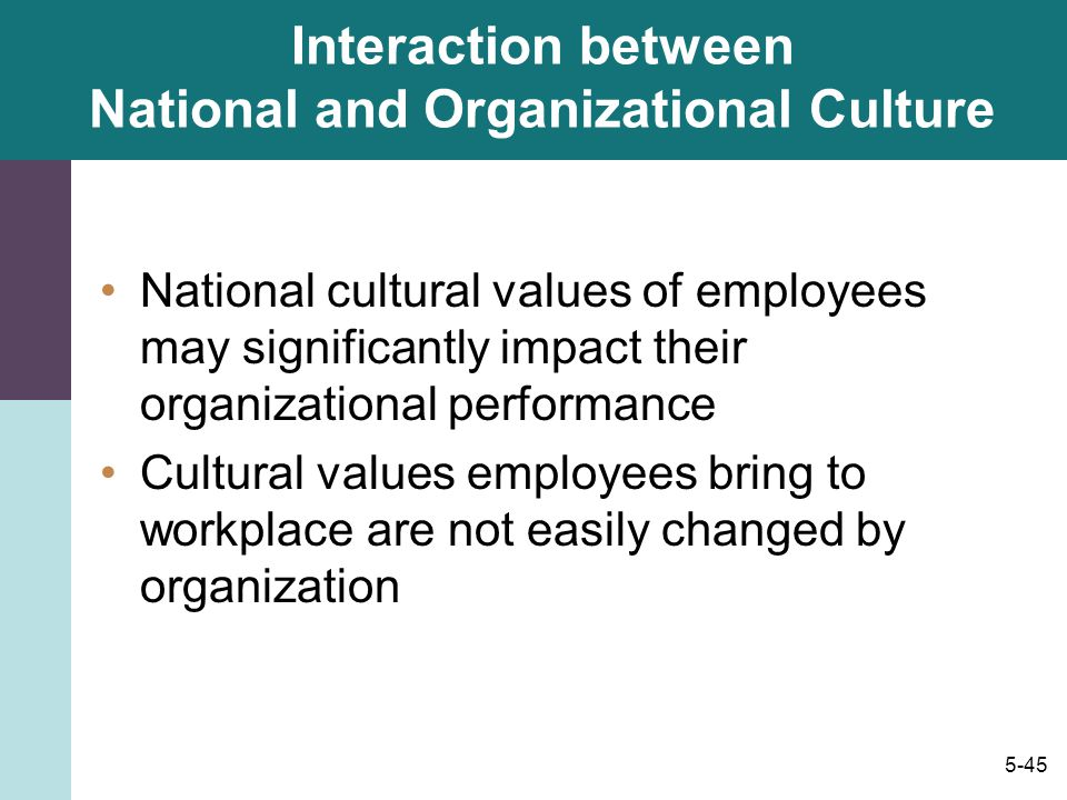 Interaction between National and Organizational Culture