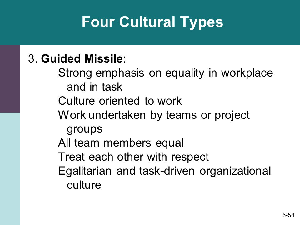 Four Cultural Types 3. Guided Missile:
