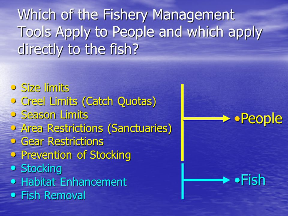 Fisheries management overview ppt video online download for Fish size limits