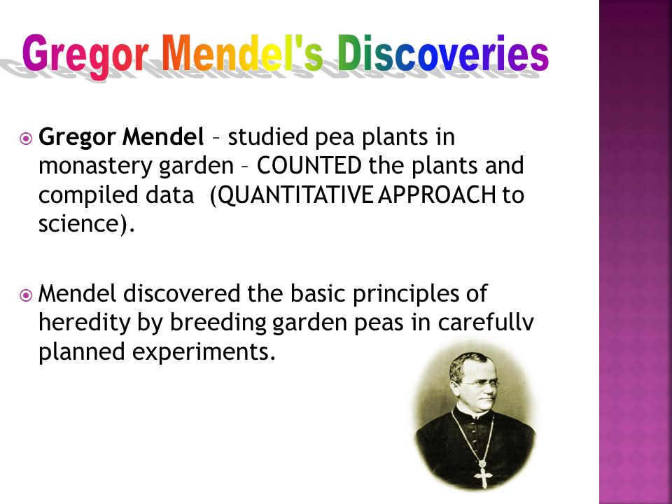 mendels approach Mendel's insights vs mendel's laws the claim that science is either physics or stamp collecting may be hyperbole, but, in a lot of ways, pre-mendelian biology was a lot closer to stamp collecting.