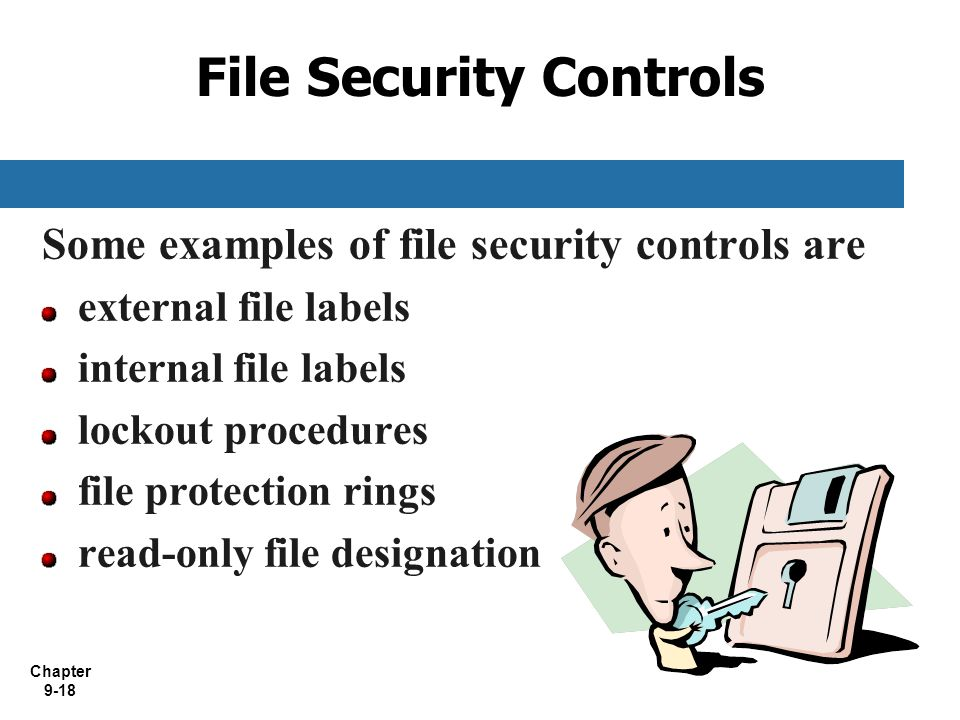File Security Controls