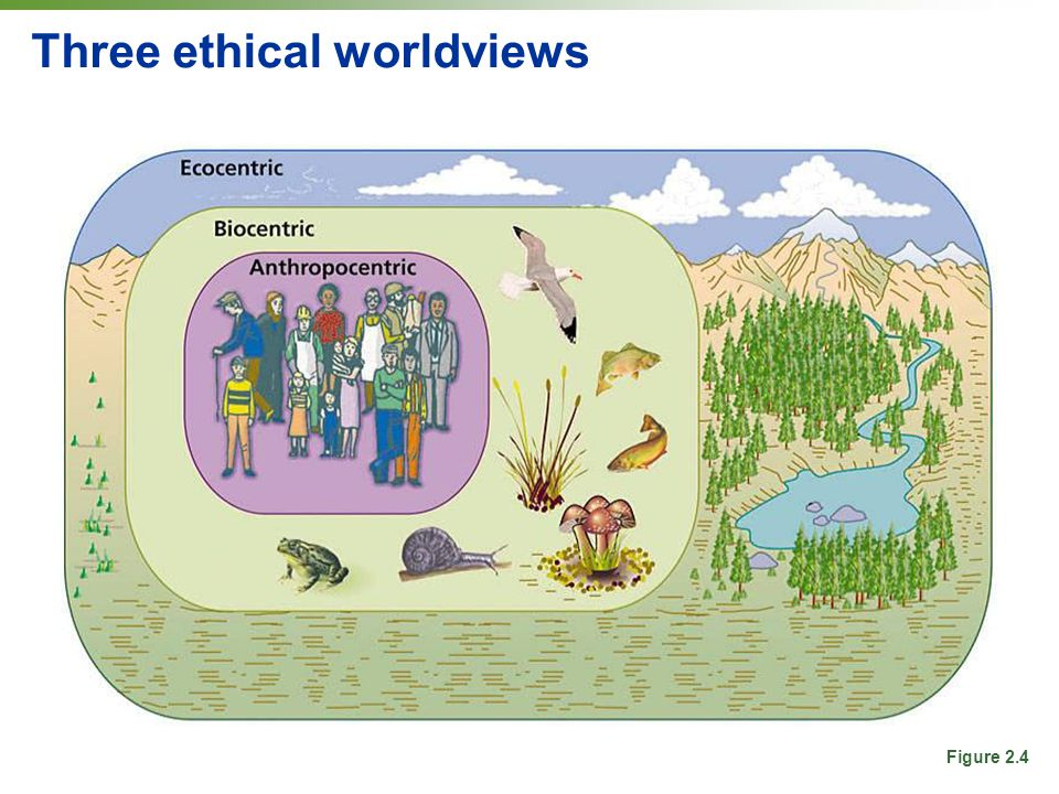 the three ethical perspectives Three ethical theories are commonly used in the consideration of marketing  ethics:  virtue ethics views marketing ethics from the perspective of the moral.