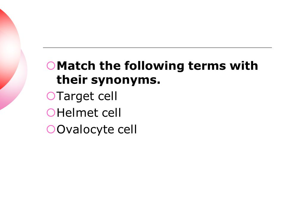 Match the following terms with their synonyms.