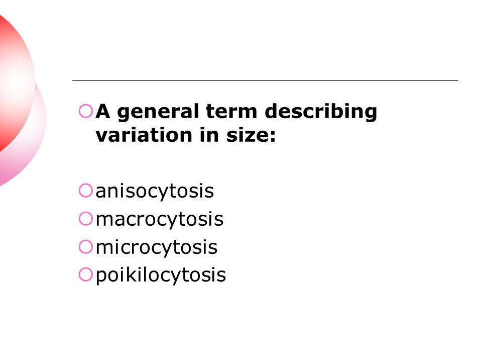 A general term describing variation in size: