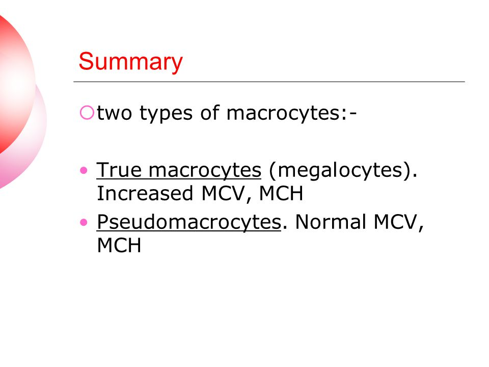 Summary two types of macrocytes:-
