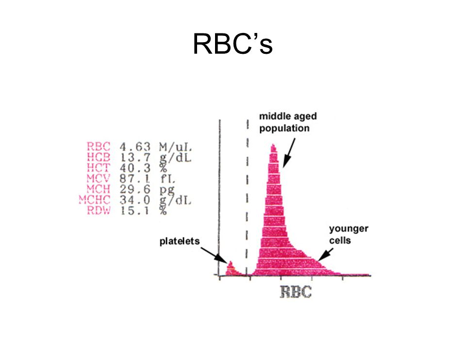 RBC's