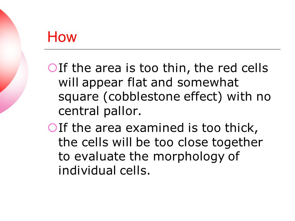 How If the area is too thin, the red cells will appear flat and somewhat square (cobblestone effect) with no central pallor.