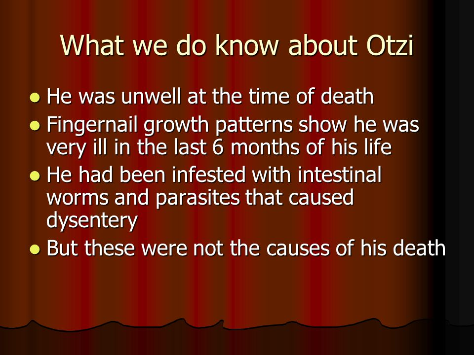 What we do know about Otzi