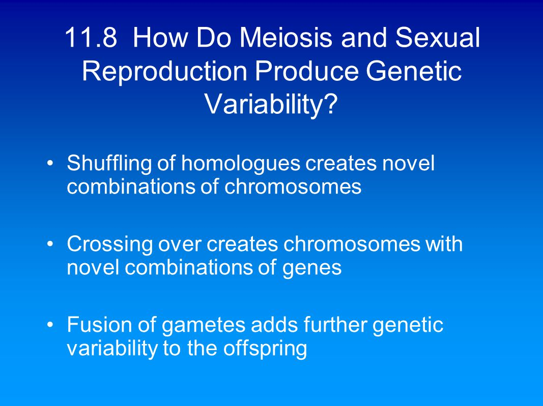 Sexual Reproduction And Genetics Worksheet - The Best and Most ...